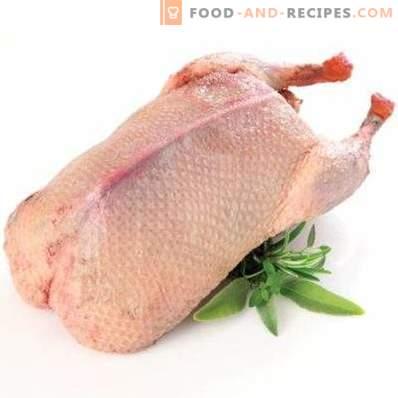 Carne de pato: beneficio y daño