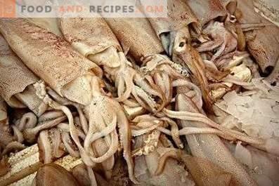 Cómo almacenar calamares