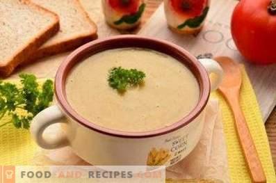 Sopa de crema de champiñones deshidratada
