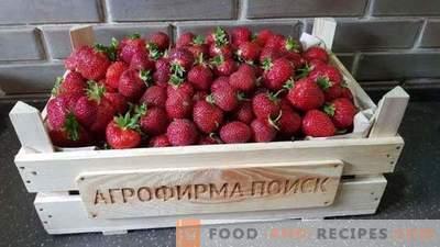 Verano de fresa. Las mejores noticias de la temporada