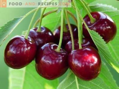 Cereza dulce: beneficios para la salud y daños