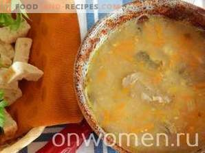 Sopa de caballa enlatada en una olla de cocción lenta