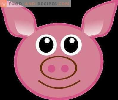 Cerdo: beneficios y daño al cuerpo