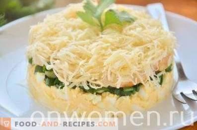 Ensalada en capas con pollo, huevo y cebollas verdes