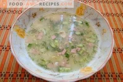 Okroshka en caldo de pollo