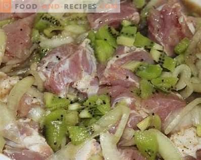 Adobo para kebab kiwi