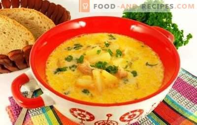 Sopa de pollo con queso derretido: el primer plato con un sabor cremoso. Las mejores recetas de sopa de pollo con queso derretido